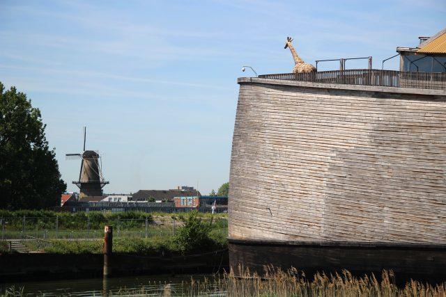 Noemova archa, Rotterdam